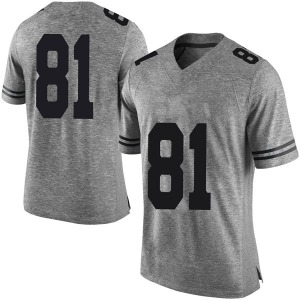 Reese Leitao Nike Texas Longhorns Men's Limited Mens Football College Jersey - Gray